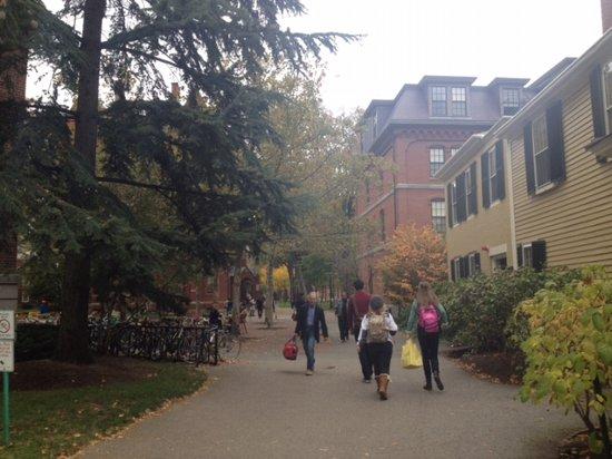 アメリカ社会人留学の思い出:ハーバード大学訪問