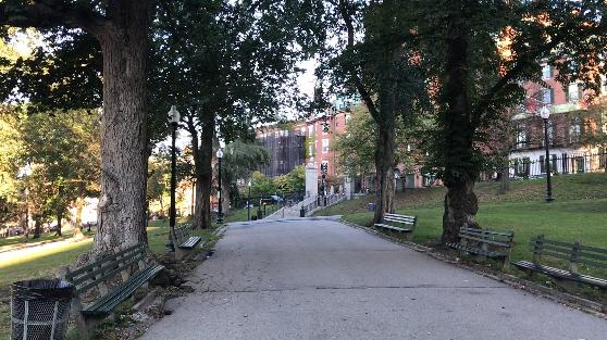 ボストンコモンの風景