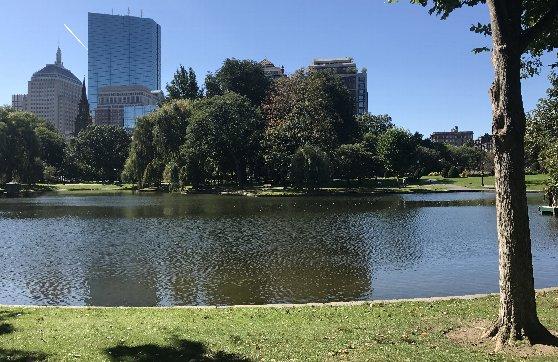 アメリカ・ボストンの治安の説明、昼間の公園
