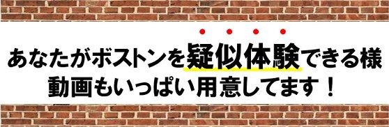 留学動画紹介