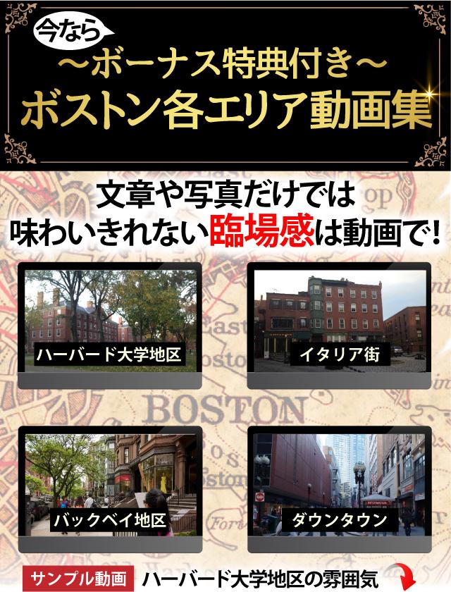 ボストン動画プレゼント